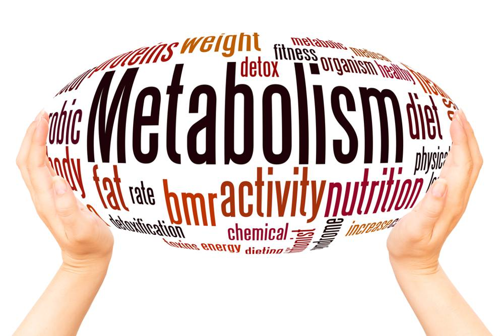 Diet Mistakes that Slow Your Metabolism