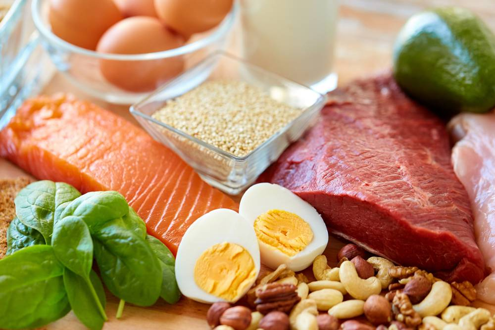 Protein Food that Can Help Burn Fat