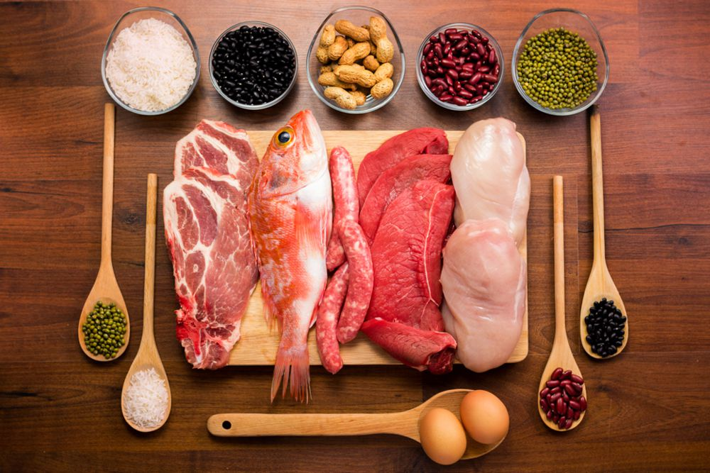 5 Protein Sources in Our Kitchen