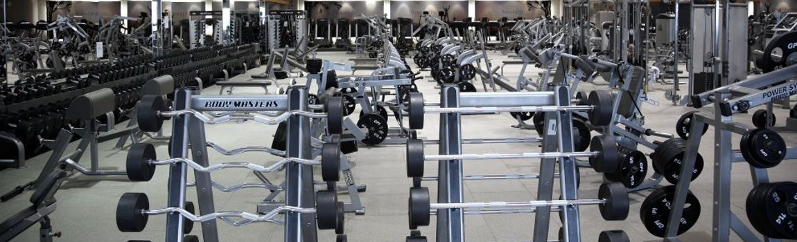 Professional Weight Training area